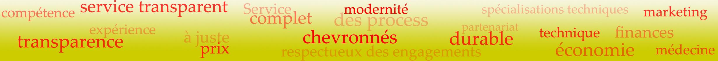 Konferenzdolmetscher Französisch-Deutsch-Englisch-Chinesisch